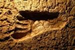 Weblog Zinken Australia Footprint